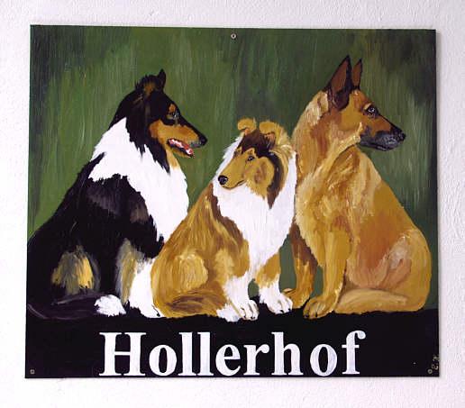 Hollerhof