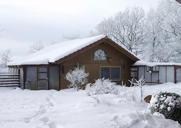 Taubenschlag Winter